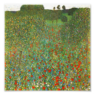 Gustav Klimt Poppy Field Photo Print