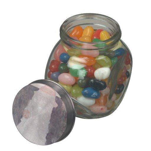 Gustav Klimt- Portrait of Margaret Wittgenstein Jelly Belly Candy Jar