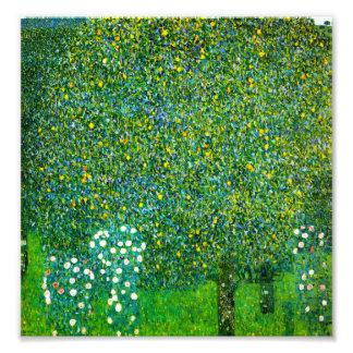 Gustav Klimt Roses Under The Pear Tree Art Photo