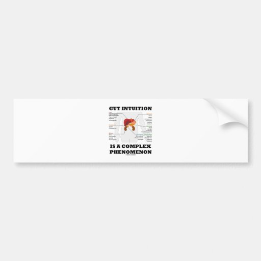 Gut Intuition Is A Complex Phenomenon (Endocrine) Bumper Stickers