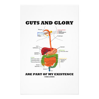 Guts And Glory Are Part Of My Existence Custom Stationery