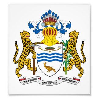 Guyana Coat Of Arms Photo Art