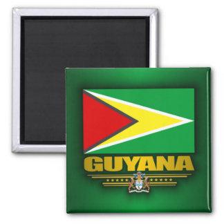 Guyana Flag Square Magnet
