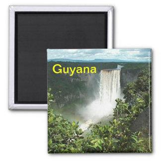 Guyana fridge magnet