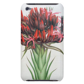Gymea Lily, 1826 (w/c on paper) iPod Touch Cases