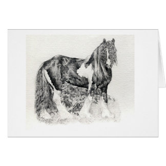Gypsy Cob Horse Portrait Blank Greeting Card
