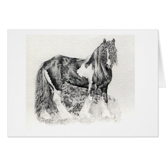 Gypsy Cob Horse Portrait Blank Greeting Card