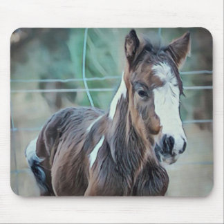 Gypsy Foal Mouse Mat