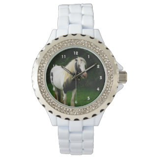 Gypsy horse photo watch