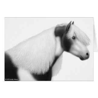 Gypsy Vanner Cob Horse Greeting Card
