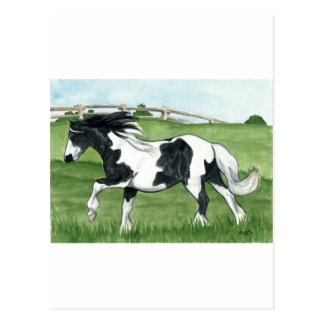 Gypsy Vanner Galloping Postcard