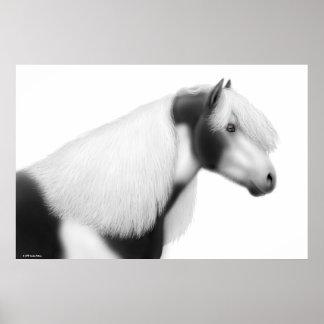 Gypsy Vanner Horse Print