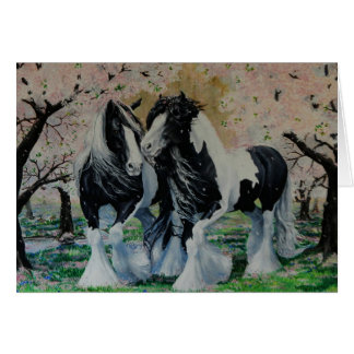 Gypsy Vanner Stallion/Mare horse cherry blossoms Card