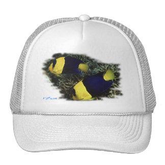 H2Oasis BiColor Angel Mesh Hats