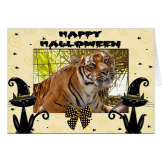 h-193-tiger-bengali greeting card