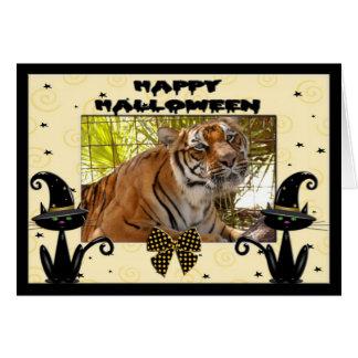 h-193-tiger-bengali greeting card