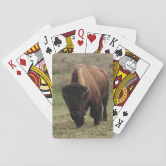 H.A.S. Arts Bison Playing Cards