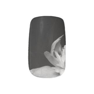 H.A.S. Arts nail designs, image detail, Blanc Minx Nail Art