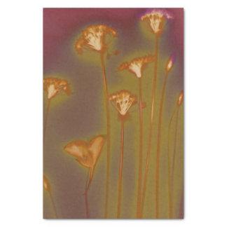 H.A.S. Arts tissue paper, Lough image detail Tissue Paper