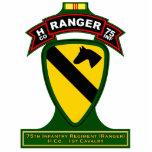 H Co, 75th Infantry Regiment - Rangers, Vietnam Acrylic Cut Out