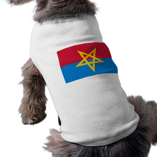 Haaksbergen, Netherlands Dog T-shirt