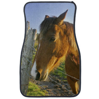 Haast, New Zealand. A horse ranch in New 2 Car Mat