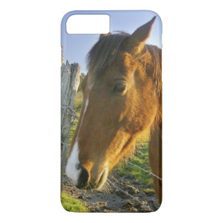 Haast, New Zealand. A horse ranch in New 2 iPhone 8 Plus/7 Plus Case