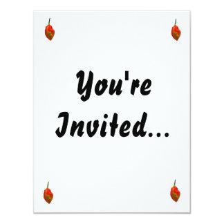 Habanero Single Pepper Photograph 11 Cm X 14 Cm Invitation Card