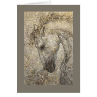 Habano the Andalusian horse card