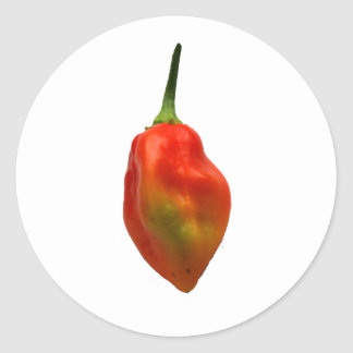 Habernero Single Pepper Photograph Round Sticker