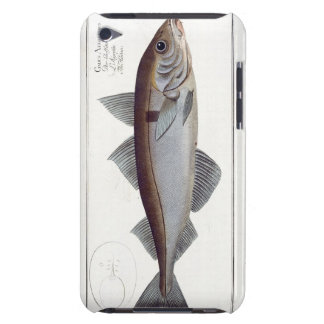 Haddock (Gadus Aeglefinus) plate LXII from 'Ichthy Case-Mate iPod Touch Case
