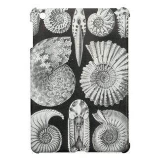 Haeckel Ammonitida iPad Mini Case