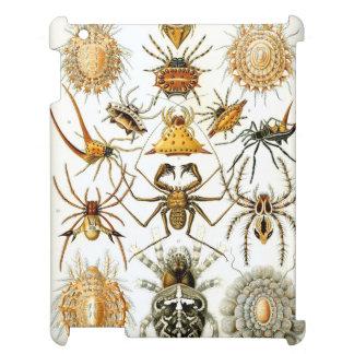 Haeckel Arachnida iPad Cases