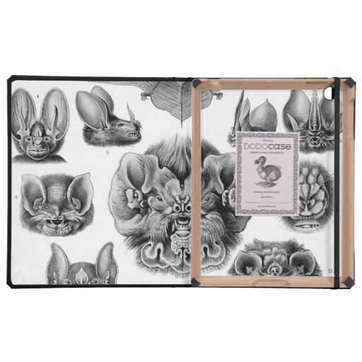 Haeckel Chiroptera Cover For iPad