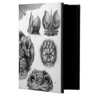 Haeckel Chiroptera Cover For iPad Air
