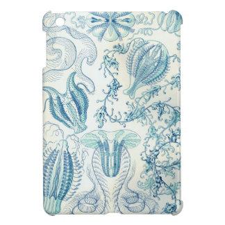 Haeckel Ctenophorae Case For The iPad Mini