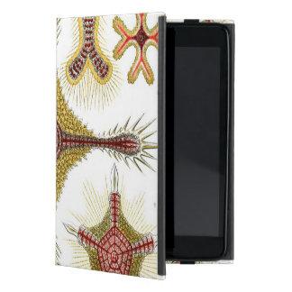 Haeckel Discoidea Covers For iPad Mini
