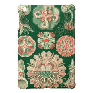 Haeckel Discomedusae iPad Mini Case