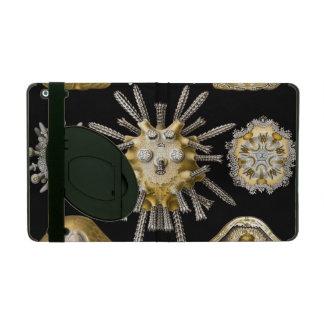 Haeckel Echinidea Cover For iPad
