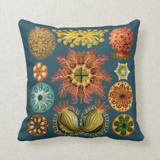 Haeckel Echinoderm pillow teal