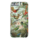 Haeckel Hummingbirds Barely There iPhone 6 case