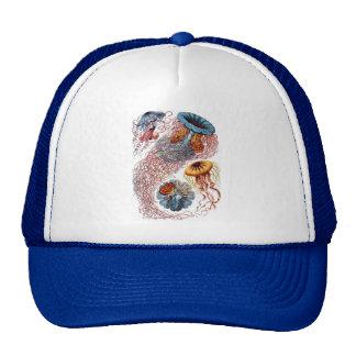 Haeckel Jellyfish Cap