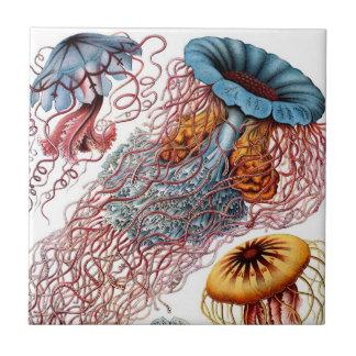 Haeckel Jellyfish Ceramics Tile