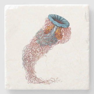 Haeckel Jellyfish Coaster