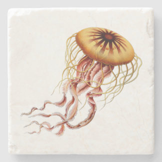 Haeckel Jellyfish Coaster