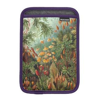 Haeckel Muscinae iPad Mini Sleeves