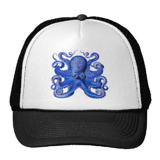 Haeckel Octopus Blue Cap