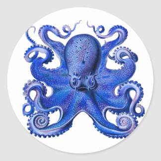 Haeckel Octopus Blue Classic Round Sticker