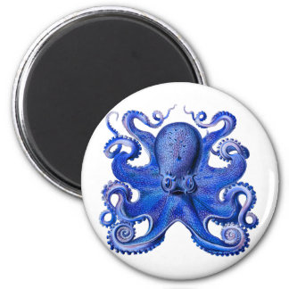 Haeckel Octopus Blue Magnet