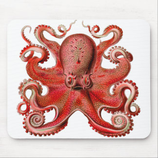 Haeckel Octopus Red Mouse Mat